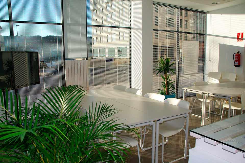 Beneficios de la luz natural en el trabajo